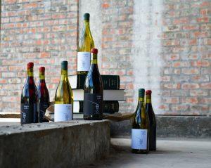 magna carter wine