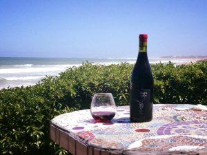 Magna Carter Wines
