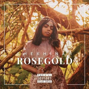 My Journey to Success Shekhinah Donnell. Rosegold