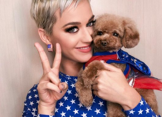 Katy Perry Tops List Of Highest Paid Women In Music