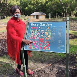 Prof. Thuli Madonsela Plants A Rose Named After Her